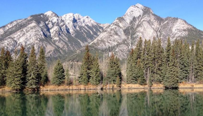 Looking Back: Fall 2015 Memoir Residency in Banff